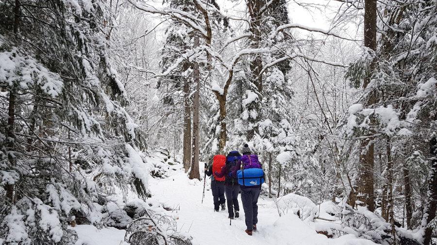 Refuge express : Voie Lactée au parc national du Mont-Mégantic