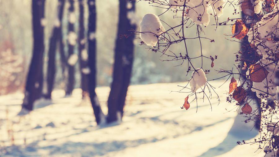 10 destinations enneigées pour l'hiver