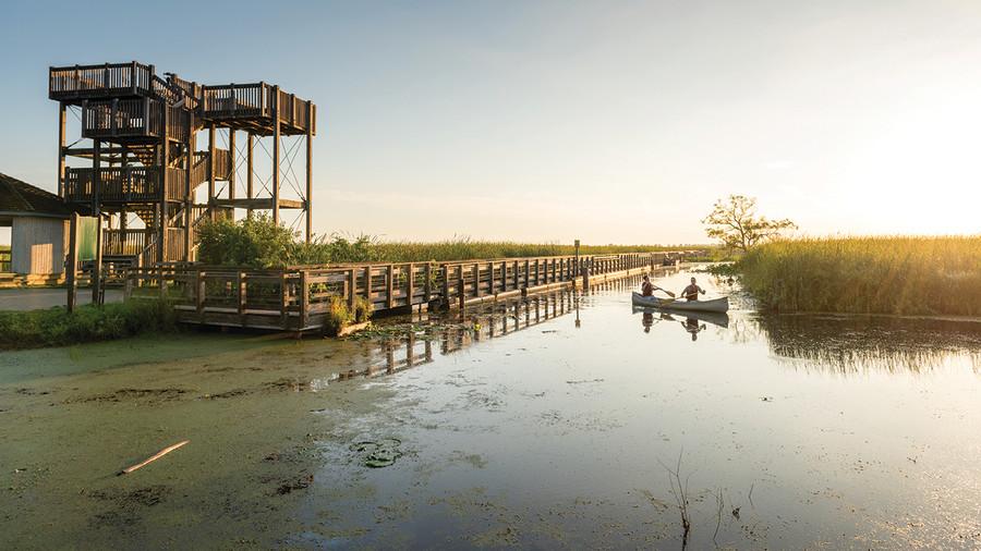 Parcs Canada: Restauration écologique extrême