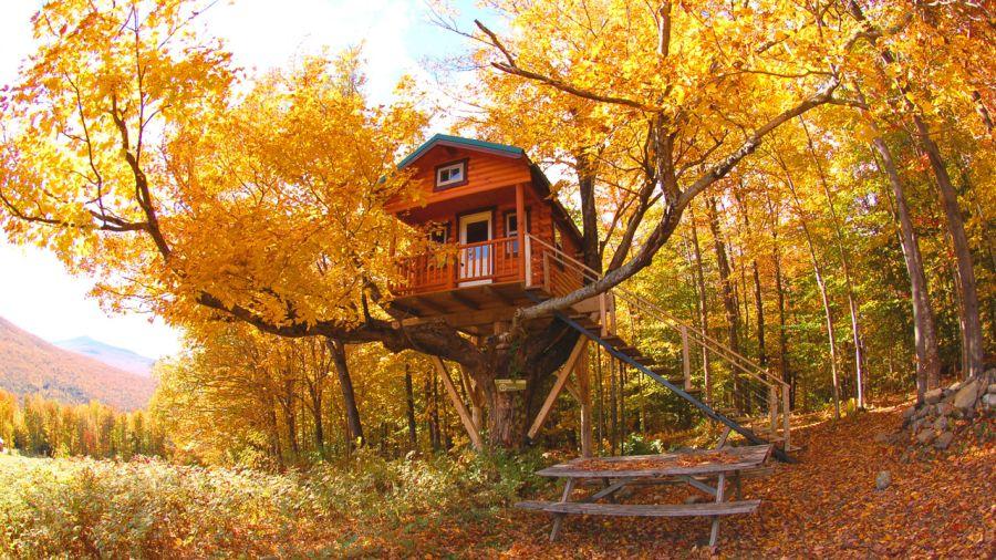Aux premières loges de l'automne
