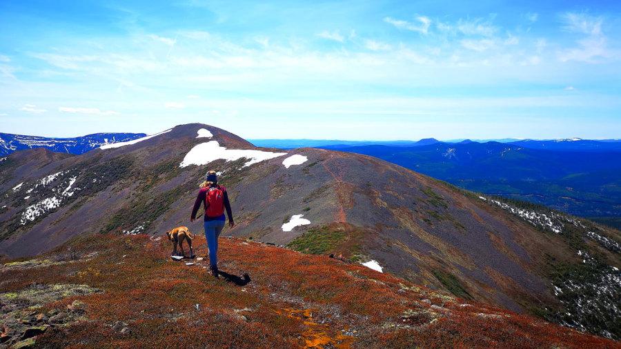 Gaspésie : 12 km de randonnée sur la crête du mont Vallières