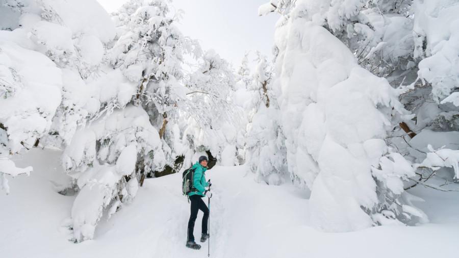 15 destinations incontournables de l'hiver québécois