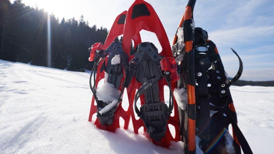 Guide de l'hiver : Raquettes dans Lanaudière