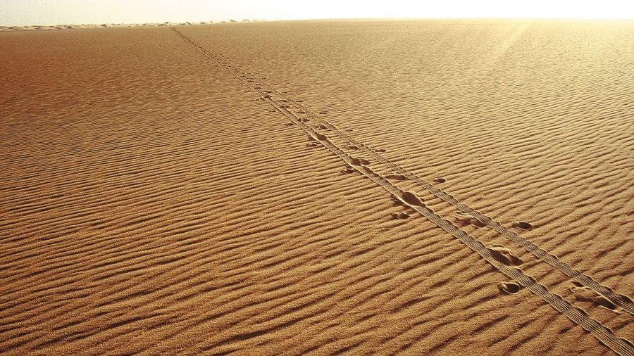 À pied à travers le Sahara: Les dessous des grandes traversées
