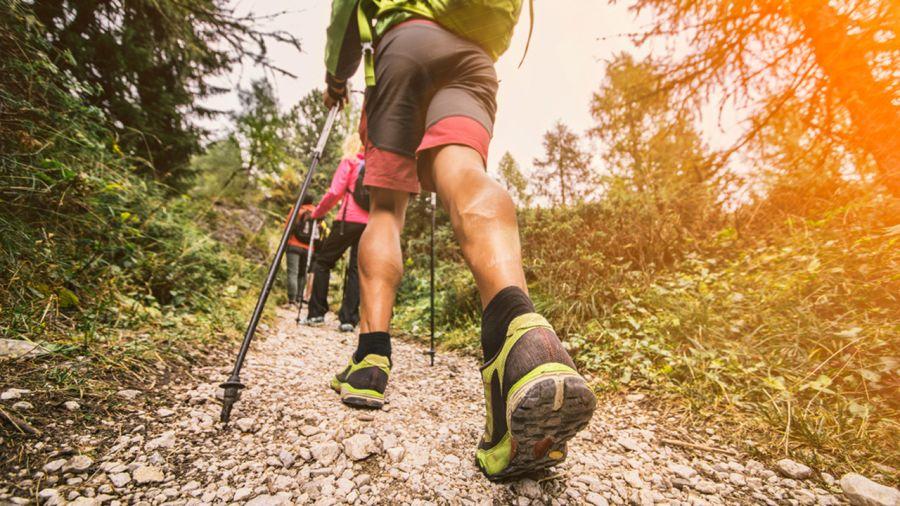Effet d'entraînement : se préparer pour la randonnée en 6 conseils et exercices