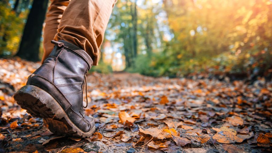 7 escapades plein air pour Thanksgiving