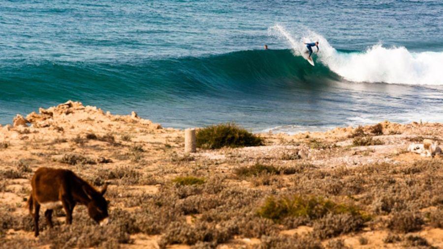 Surfez sur la vague même en hiver : Tagazhout, Maroc