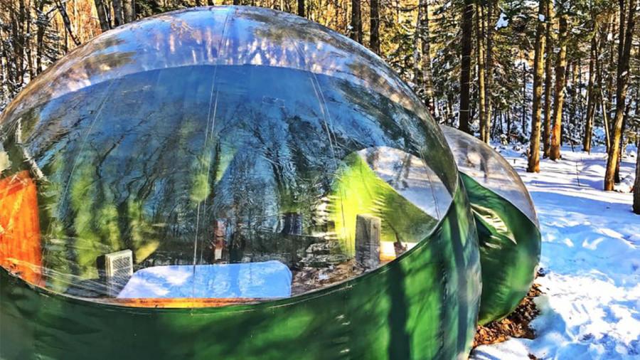 Un séjour en forêt dans une bulle transparente
