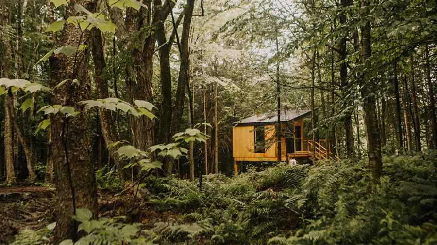 Laö Cabines : des mini-chalets tout confort en forêt