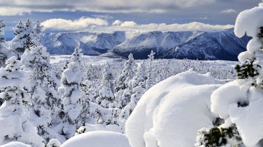 Nouveautés au Québec pour l'hiver 2019