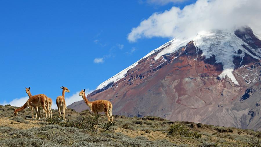 Équateur : Voyage au centre du monde