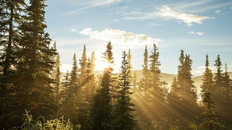 Randonnées de moins de 72 heures : Parc national de la Gaspésie