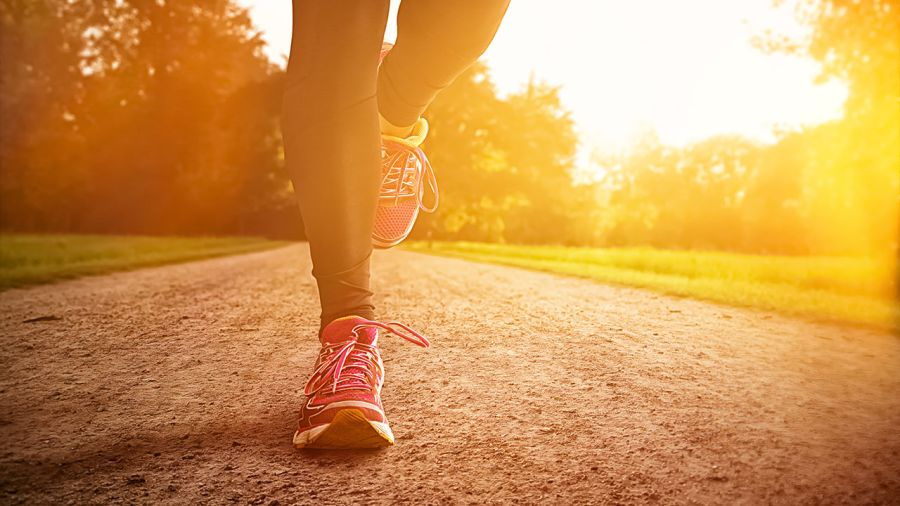 Conseils | Changements physiologiques : les effets du sport sur ...