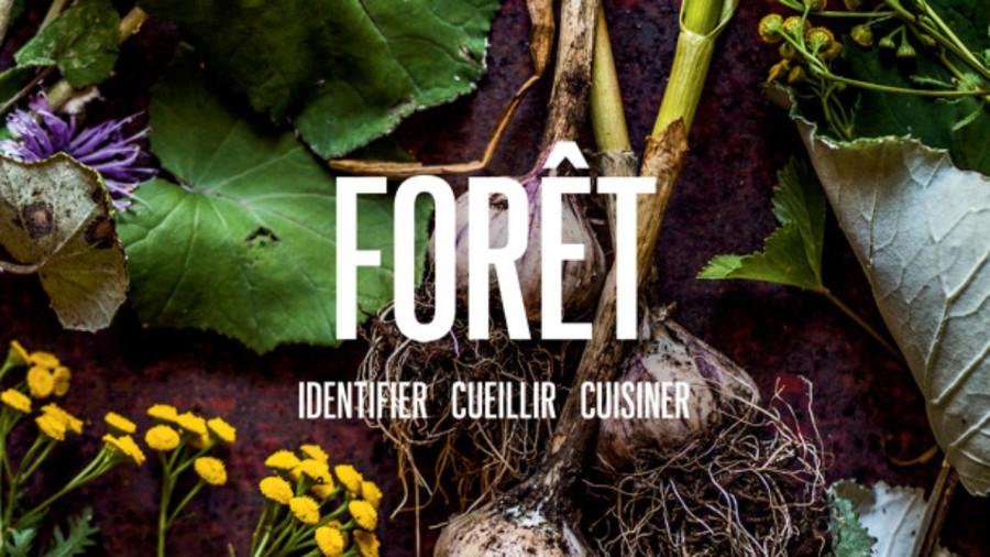 Livre : Forêt, pour déguster le terroir sauvage québécois
