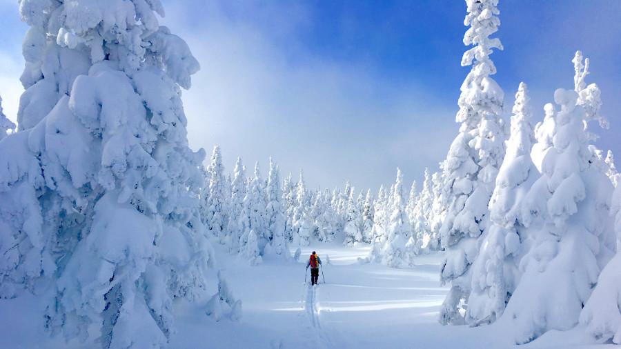 Ski nordique de refuge en refuge dans le parc national de la Gaspésie