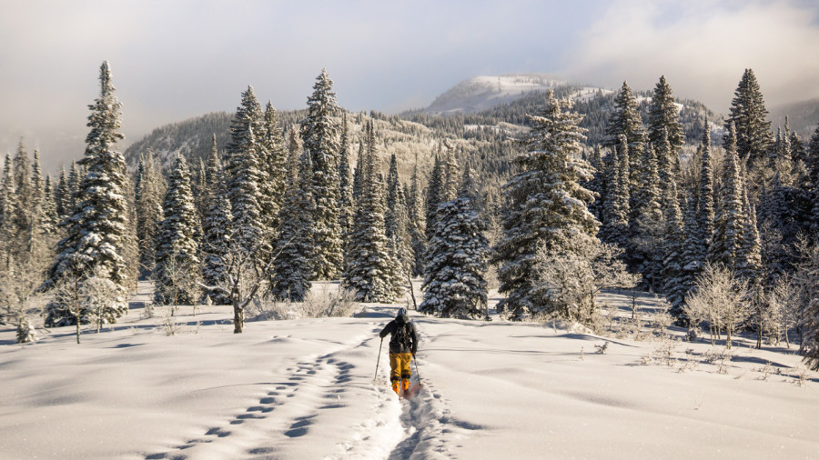 Plein air hivernal gratuit