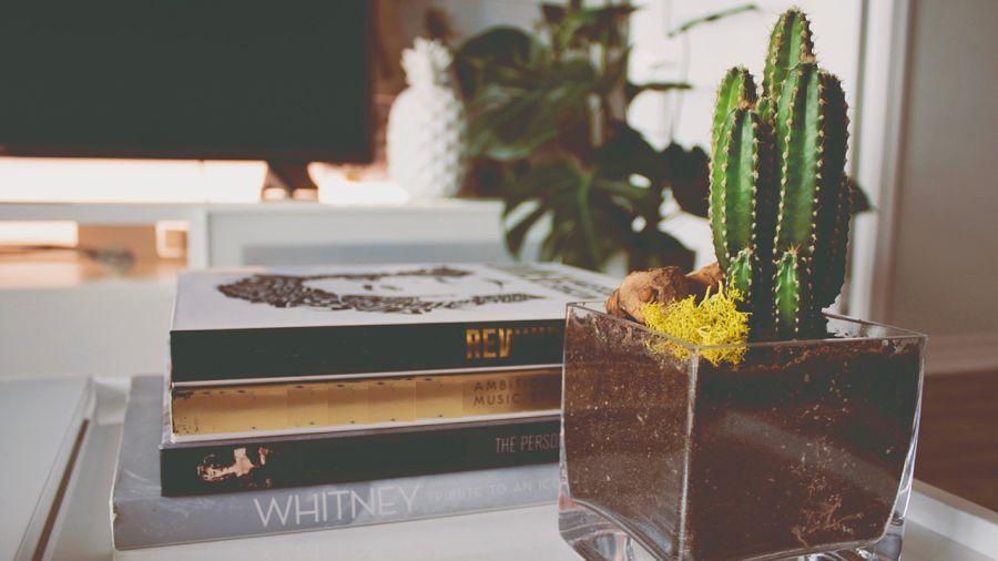 5 beaux livres pour votre table à café