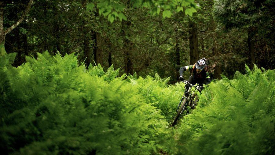 Vélo de montagne: Gorge de Coaticook