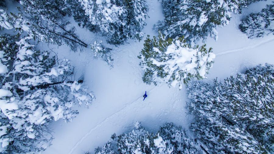 Survie en forêt l'hiver : sauriez-vous quoi faire ?