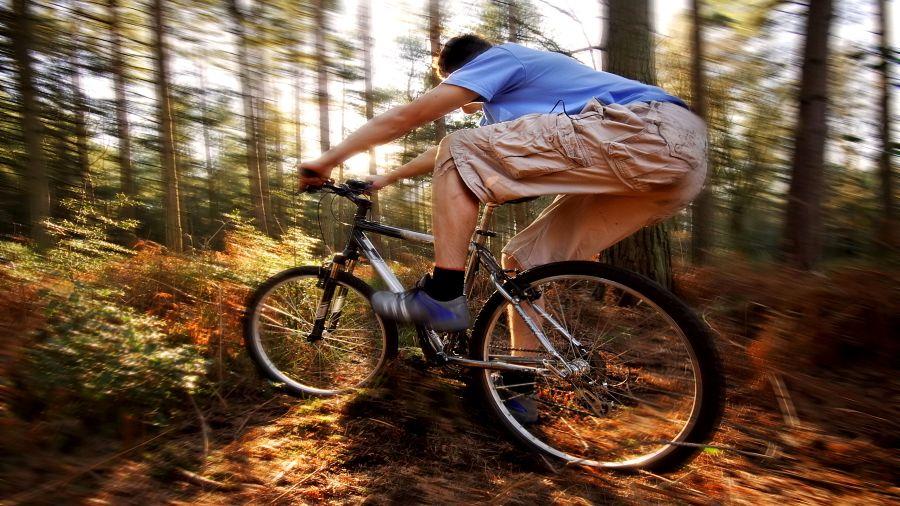 Vélo de montagne à Vallée Bras-du-Nord