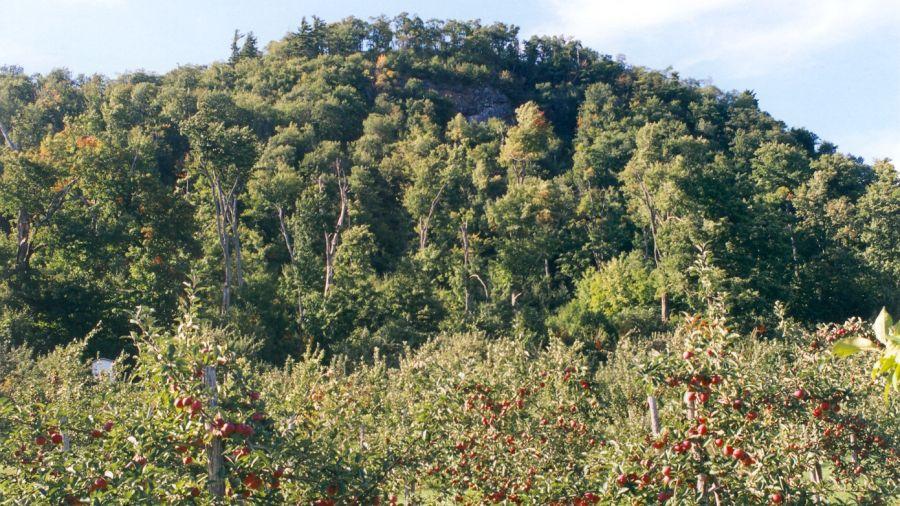 Randonnées au Mont Rougemont