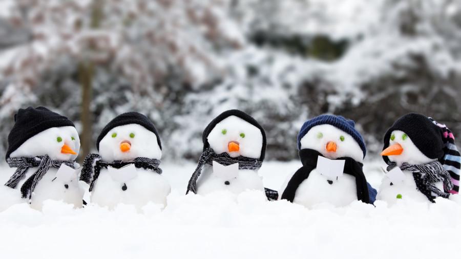 Famille active : découvrir les plaisirs de l'hiver