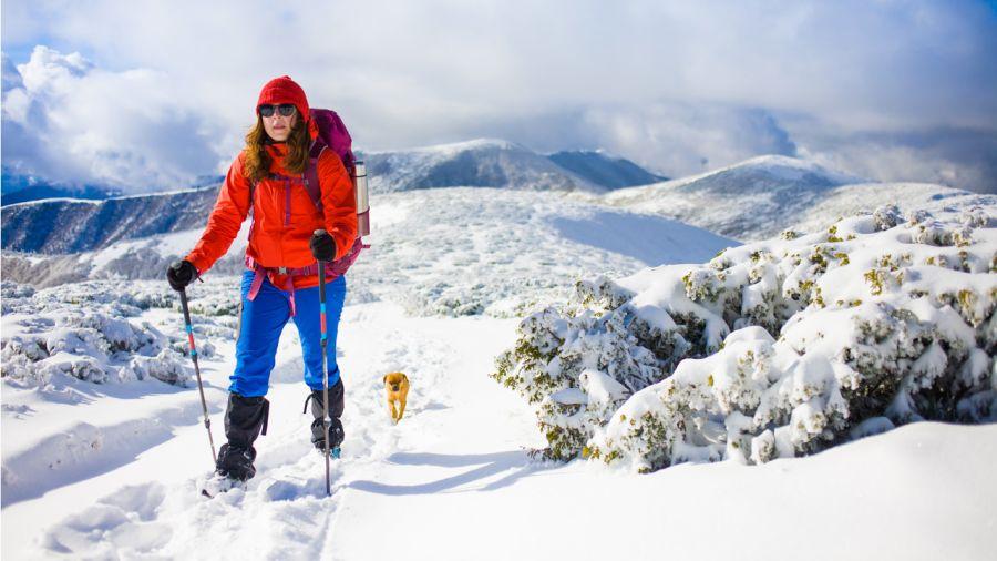 Raquette : trouvez vos défis de l'hiver !