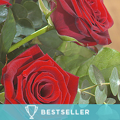 12 Red Roses - Flowers