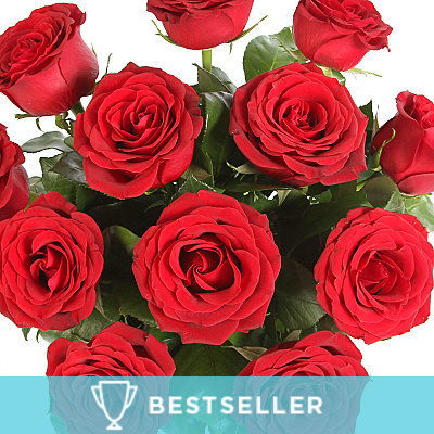 A Dozen Red Roses - Flowers
