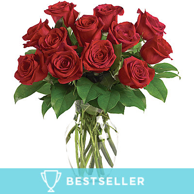 12 Long Stem Red Rose Special - Flowers