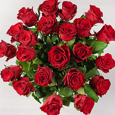 Two Dozen Red Roses - Flowers
