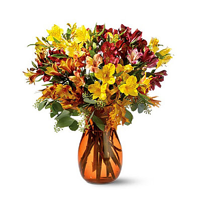 50 Blooms of Alstroemeria - Flowers