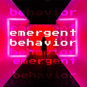 Emergent Behavior
