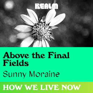 How We Live Now: Above the Final Fields