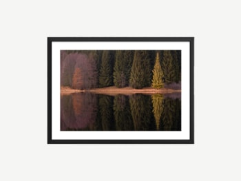 Artwork showing trees reflecting in water.