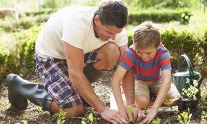 Making Nutrition Fun Helps Kids Change