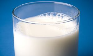 Milk May Slow Knee Arthritis in Women