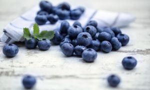 Why You Should Eat Wild Blueberries