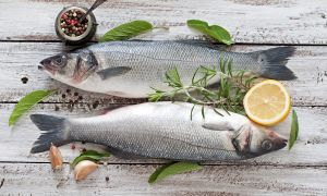 The Brainy Benefits of Fish