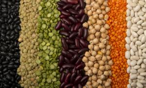 Want to Live Longer? Add Beans to Your Diet