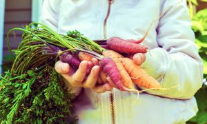 Surprising Benefits of Eating Carrot Tops