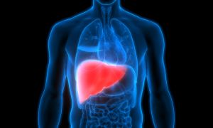 News: Liver Cancer, Cirrhosis Deaths on the Rise