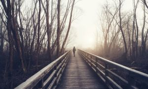 Coping with Seasonal Affective Disorder: 4 Treatments That Help