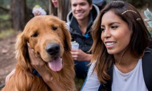 Ask the Doctors: How to Choose the Right Medications—For You and Your Pet