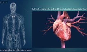 Test Your Knowledge: Diabetic Heart Disease