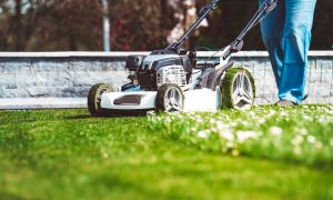 Expert Safety Tips on Playing Sports and Mowing the Lawn
