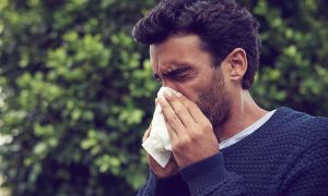 Ask Oz and Roizen: The Climate's Effect on Allergies, and Diagnosing Narcolepsy
