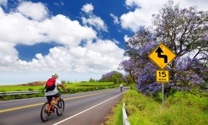 The Insider's Guide to Healthy Hawaii: 8 Tips to Bike Ride Safely