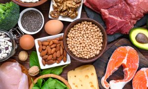 Why the Varying Your Protein Source Matters