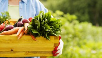The Best Foods for Asthma